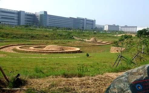 水堀頭公園(滯6)抽象的臺灣水牛意象